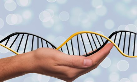 Le régime ADN : la technique qui exploite votre code génétique pour mincir