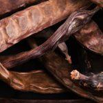 Un substitut au cacao : la caroube (+recettes)