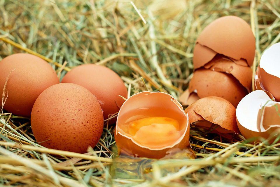 Les 10 meilleurs aliments anti-cholestérol