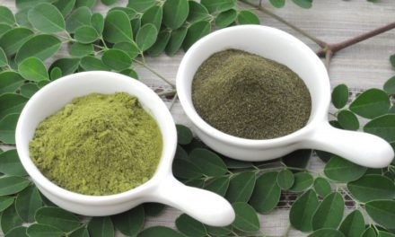 L'arbre de Moringa- THE plante miracle