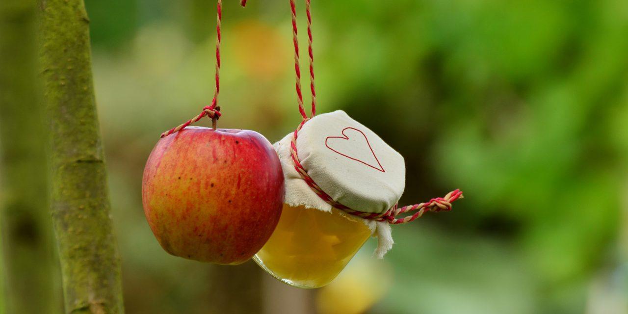 Les compotes de fruits