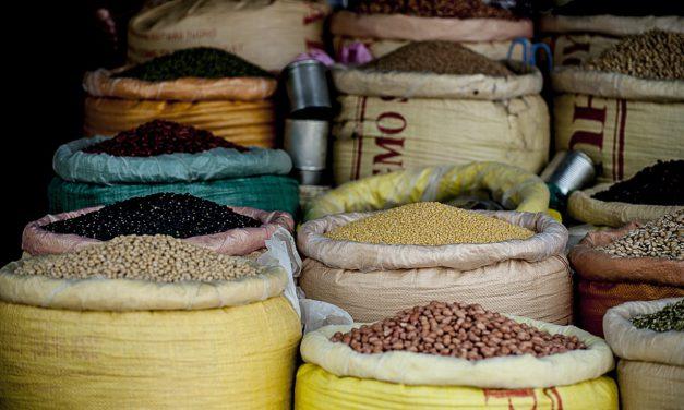 Les 10 aliments les plus riches en fibres