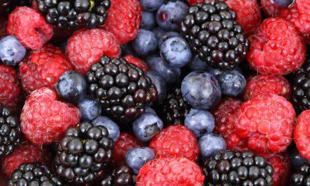 Les 10 aliments les plus antioxydants