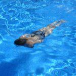 Aquagym : avantages et inconvénients d'un sport en vogue