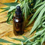Quels sont les bienfaits de l'huile de CBD sur la santé ?